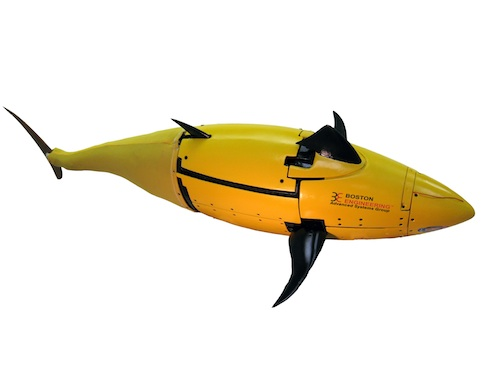 The so-called tuna robot, designed in partnership with Boston Engineering, builds off the seaworthy profile of the tuna and includes a propulsion system, a single oscillating foil, appropriately placed fins, and a finely-tuned muscular and sensory control system.