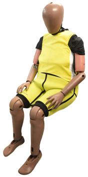 "An ""elderly"" crash-test dummy. Image courtesy of Humanetics."
