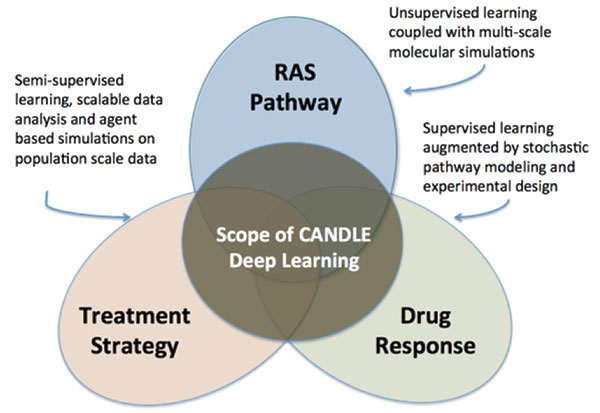 The Department of Energy (DOE) and National Institutes of Health have launched the CANDLE (CANcer Distributed Learning Environment) project to better understand cancer interaction. Image courtesy of DOE.
